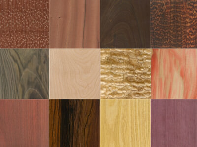 Types of Wood Hardness and Their Ideal Uses